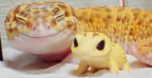 Усмихни се!
