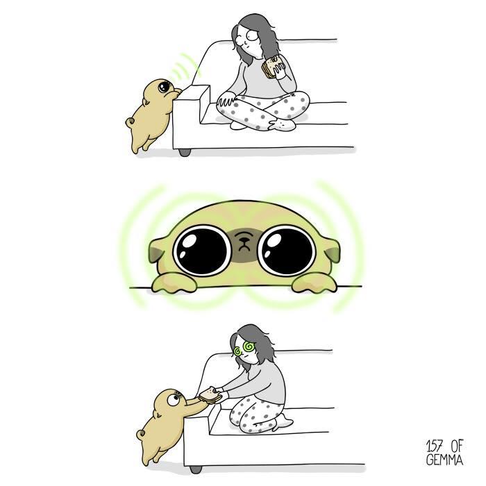 Забавната страна на живота с куче