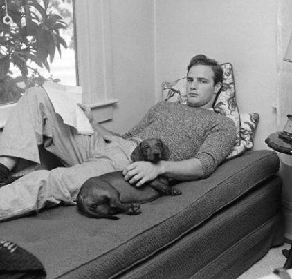 Марлон Брандо, 1949