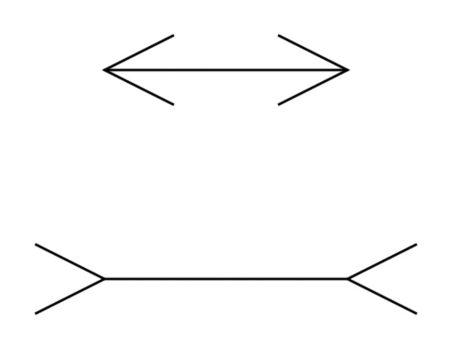 Илюзия на Мюлер-Лайър