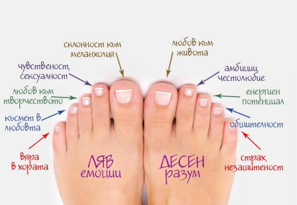 Тайните, които крият краката ни