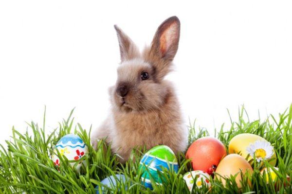 Гадания и предсказания на Великден