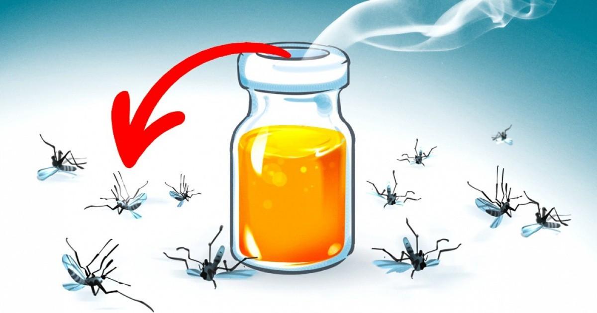 11 миризми, които убиват комарите на мига