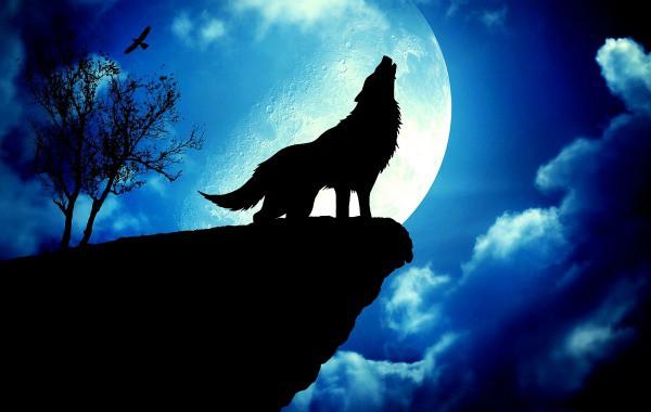 """""""Вълча луна"""" на 24 януари. Вижте какво ще ни донесе"""